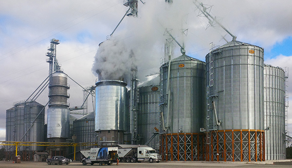 Another Project for North Gower Grains | Horst Systems